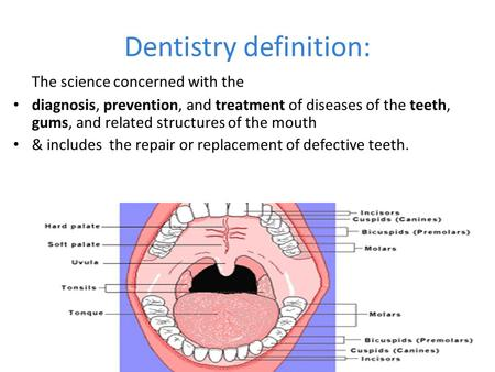 Dentistry definition: The science concerned with the diagnosis, prevention, and treatment of diseases of the teeth, gums, and related structures of the.