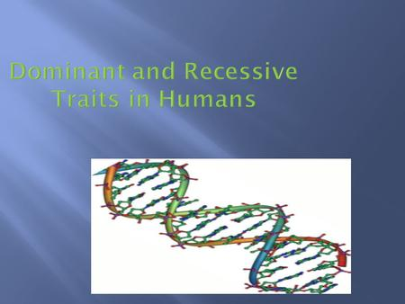 Dominant and Recessive Traits in Humans.  There are over 200 traits that are transmitted from generation to generation in humans. These interesting.