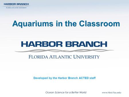 Aquariums in the Classroom Developed by the Harbor Branch ACTED staff.
