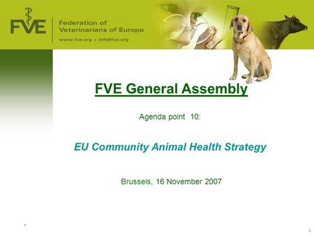 7 1 FVE General Assembly Agenda point 10: EU Community Animal Health Strategy Brussels, 16 November 2007.