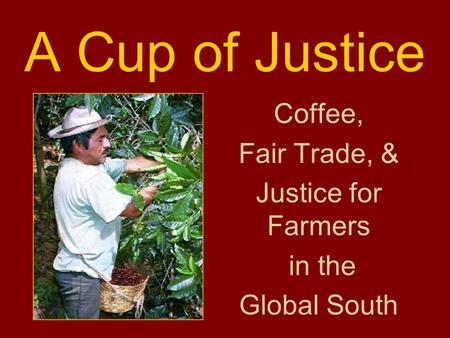 A Cup of Justice Coffee, Fair Trade, & Justice for Farmers in the Global South.