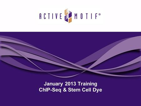 January 2013 Training ChIP-Seq & Stem Cell Dye. Agenda 2 Active Motif is introducing 2 new products in our next issue of Motifvations which will reach.