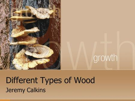 Different Types of Wood Jeremy Calkins. Introduction Welcome to Materials Processing. There are many different types of wood. We will be working with.
