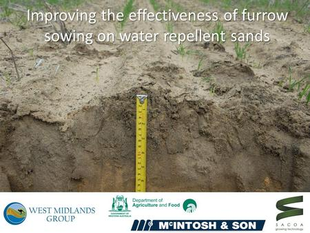 Improving the effectiveness of furrow sowing on water repellent sands.