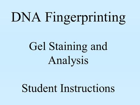 DNA Fingerprinting Gel Staining and Analysis Student Instructions.
