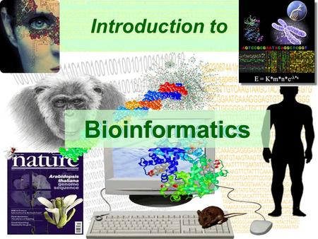 1 Introduction to Bioinformatics 2 Introduction to Bioinformatics. LECTURE 3: SEQUENCE ALIGNMENT * Chapter 3: All in the family.