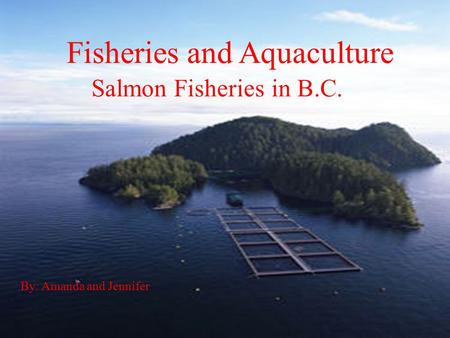 Fisheries and Aquaculture Salmon Fisheries in B.C. By: Amanda and Jennifer.
