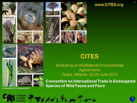 1 Convention on International Trade in Endangered Species of Wild Fauna and Flora www.CITES.org CITES Workshop on Multilateral Environmental Agreements.