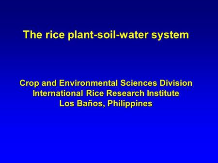 The rice plant-soil-water system Crop and Environmental Sciences Division International Rice Research Institute Los Baños, Philippines.