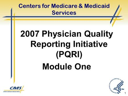 1 Centers for Medicare & Medicaid Services 2007 Physician Quality Reporting Initiative (PQRI) Module One.