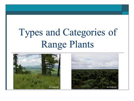 Types and Categories of Range Plants Jen Peterson.