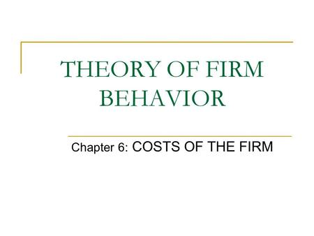 THEORY OF FIRM BEHAVIOR