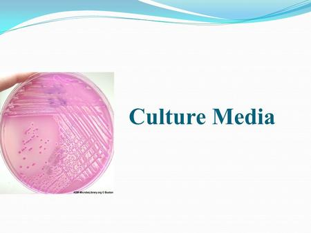 Culture Media. A culture medium (media, plural) is nutrient material prepared in the laboratory for the growth of bacteria, molds, and other microorganisms.