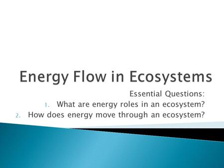 Essential Questions: 1. What are energy roles in an ecosystem? 2. How does energy move through an ecosystem?