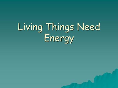 Living Things Need Energy. Energy  Sunlight is the source of energy for almost all living things.