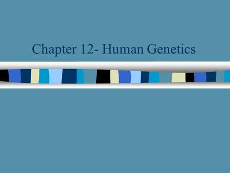 Chapter 12- Human Genetics Homologous Chromosomes n Autosomes- All other chromosomes except the X and Y chromosome n Generally speaking, homologous chromosomes.