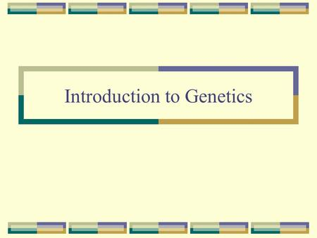 Introduction to Genetics. Genetics – The scientific study of heredity. Example: Geneticist, Genetic counselor, Genetics researcher.