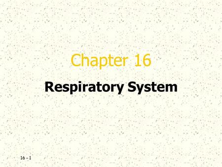 16 - 1 Chapter 16 Respiratory System. 16 - 2  Introduction  A.The respiratory system consists of tubes that filter incoming air and transport it into.