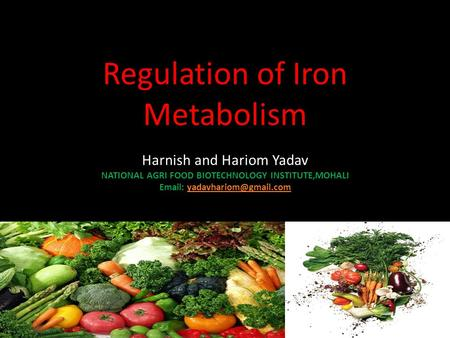 Regulation of Iron Metabolism Harnish and Hariom Yadav NATIONAL AGRI FOOD BIOTECHNOLOGY INSTITUTE,MOHALI