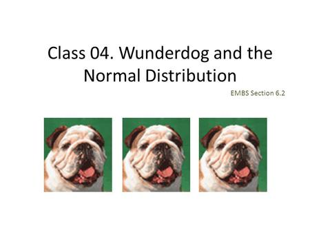 Class 04. Wunderdog and the Normal Distribution