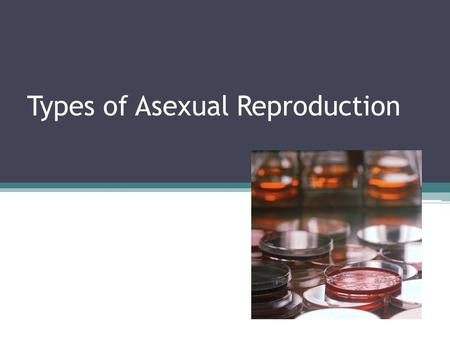 Types of Asexual Reproduction. What are three ways a picture could be duplicated?