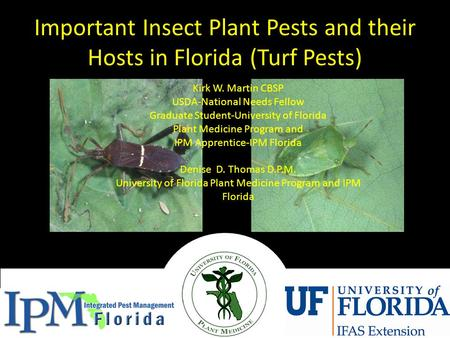 Important Insect Plant Pests and their Hosts in Florida (Turf Pests) Kirk W. Martin CBSP USDA-National Needs Fellow Graduate Student-University of Florida.