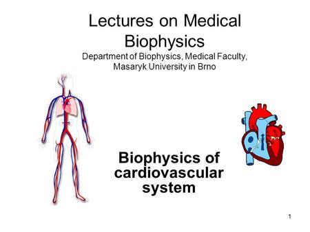 1 Biophysics of cardiovascular system Lectures on Medical Biophysics Department of Biophysics, Medical Faculty, Masaryk University in Brno.