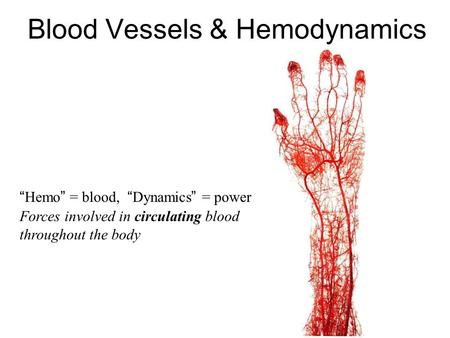 Blood Vessels & Hemodynamics