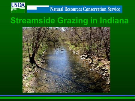 Streamside Grazing in Indiana. Indiana Streams: Are a precious natural resource Provide clean water for a variety of human uses as well as habitat for.