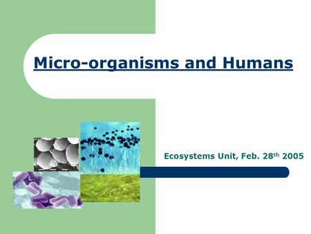 Micro-organisms and Humans Ecosystems Unit, Feb. 28 th 2005.