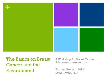 + The Basics on Breast Cancer and the Environment A Workshop for Breast Cancer Advocates presented by: Barbara Brenner. DrPH Sarah Evans, PhD.