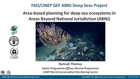 20 June 2015 UNEP-World Conservation Monitoring Centre FAO/UNEP GEF ABNJ Deep Seas Project Component 4 FAO/UNEP GEF ABNJ Deep Seas Project Area-based planning.