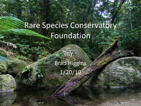 Rare Species Conservatory Foundation BY: Brad Higgins 1/20/10.