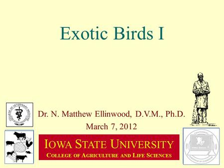 Exotic Birds I Dr. N. Matthew Ellinwood, D.V.M., Ph.D. March 7, 2012 I OWA S TATE U NIVERSITY C OLLEGE OF A GRICULTURE AND L IFE S CIENCES.