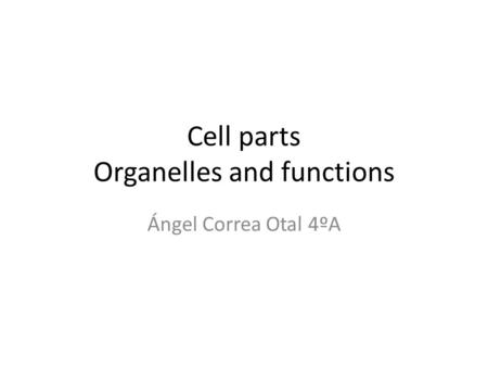 Cell parts Organelles and functions Ángel Correa Otal 4ºA.