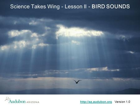 Version 1.0 Science Takes Wing - Lesson II - BIRD SOUNDS.