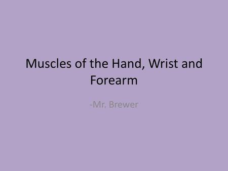 Muscles of the Hand, Wrist and Forearm