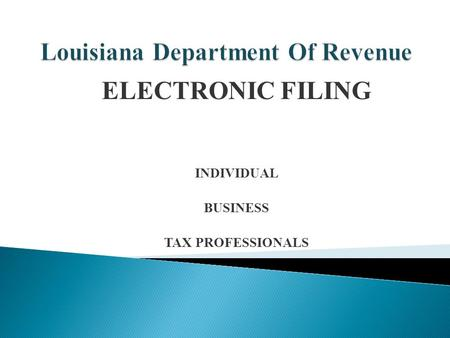 ELECTRONIC FILING INDIVIDUAL BUSINESS TAX PROFESSIONALS.