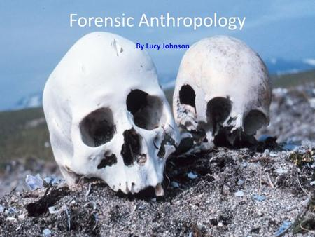 By Lucy Johnson Forensic Anthropology By Lucy Johnson.