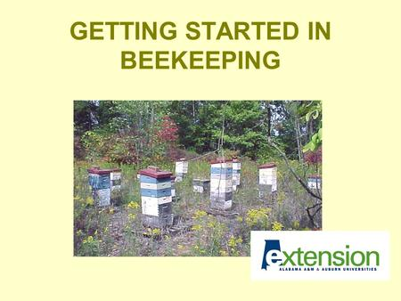 GETTING STARTED IN BEEKEEPING. THINGS TO CONSIDER Level of commitment Cost Location/Liability Equipment Resources.