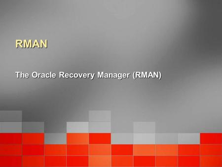 The Oracle Recovery Manager (RMAN)