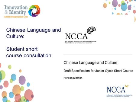 Chinese Language and Culture: Student short course consultation.
