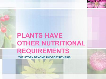 PLANTS HAVE OTHER NUTRITIONAL REQUIREMENTS THE STORY BEYOND PHOTOSYNTHESIS.
