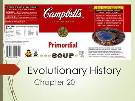 Evolutionary History Chapter 20. Before life…  Chemical evolution:  The formation of small organic molecules preceded larger ones  Larger, more complex.