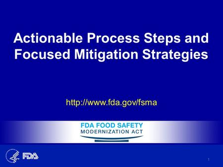 Actionable Process Steps and Focused Mitigation Strategies  1.