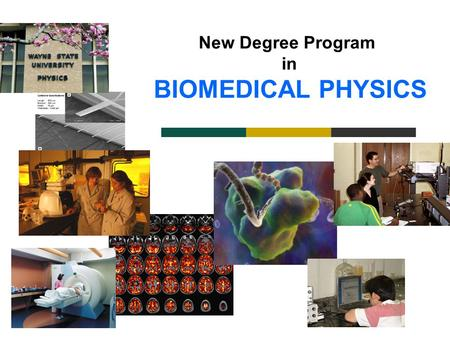 New Degree Program in BIOMEDICAL PHYSICS. What is Biomedical Physics? Biomedical Physics: - Applications of physics to biology and medicine. Molecular.