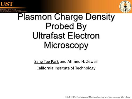 Plasmon Charge Density Probed By Ultrafast Electron Microscopy
