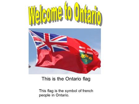 This is the Ontario flag This flag is the symbol of french people in Ontario.