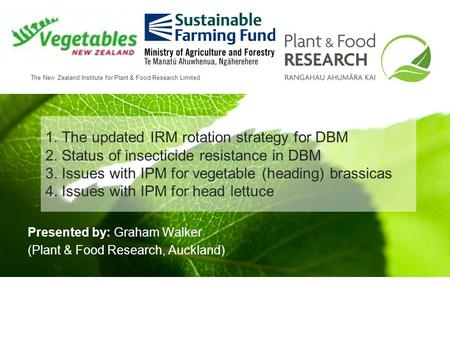 The New Zealand Institute for Plant & Food Research Limited 1. The updated IRM rotation strategy for DBM 2. Status of insecticide resistance in DBM 3.