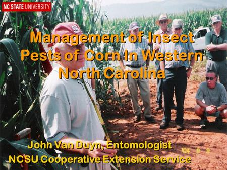 Management of Insect Pests of Corn In Western North Carolina John Van Duyn, Entomologist NCSU Cooperative Extension Service John Van Duyn, Entomologist.
